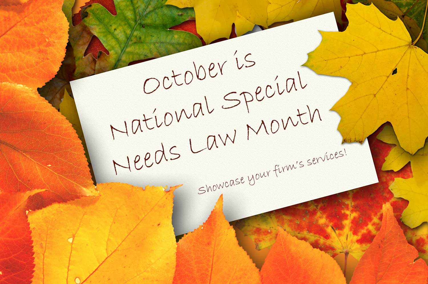 October-is-National-Special-Needs-Law-Month.jpg